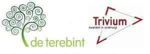 13. Logo Terebint